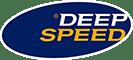 ®DeepSpeed